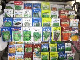 ↑変わった種類の野菜の種がたくさんです!