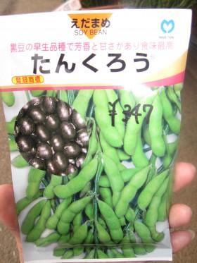 ↑たんくろう <br /> 枝豆を枯れるまで放置すると黒豆になるので枝豆と黒豆の両方楽しめちゃいます★