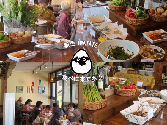 iwatate1